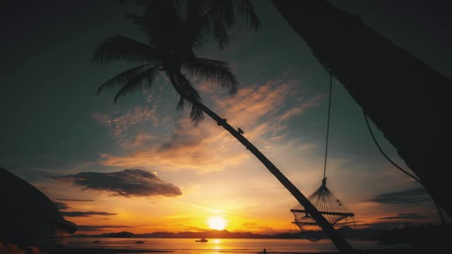 hammock at sunset in the beach - exoticism stock videos & royalty-free footage