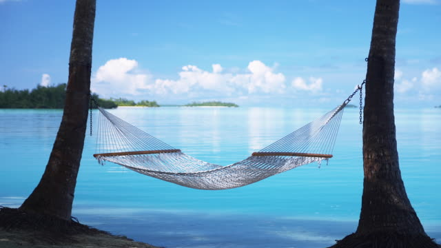 vídeos de stock, filmes e b-roll de ms, hammock between palm trees at sandy tropical beach, aitutaki lagoon, aitutaki, cook islands - rede de dormir