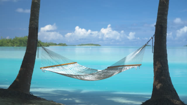 MS, Hammock gently swaying between palm trees at sandy tropical beach, Aitutaki Lagoon, Aitutaki, Cook Islands