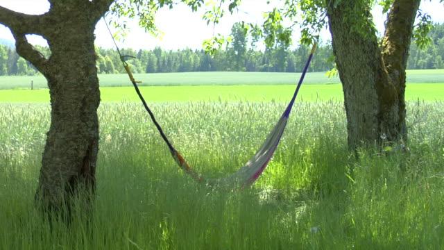 hammock - hängmatta sol bildbanksvideor och videomaterial från bakom kulisserna