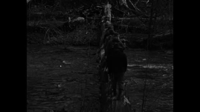 vidéos et rushes de men in boat try to rescue a swimming pig after washita river flood / portland, or: men and tents at camp / men walking across stream via log / pack... - portland oregon