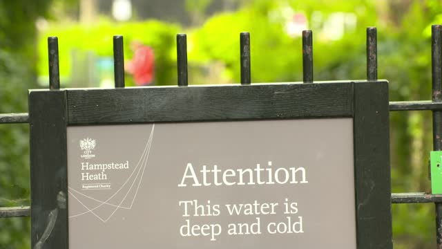 hampstead ponds swimmers threaten legal action against city over increased charges; england: london: gir: int reporter sitting with laptop kate... - duck stock videos & royalty-free footage