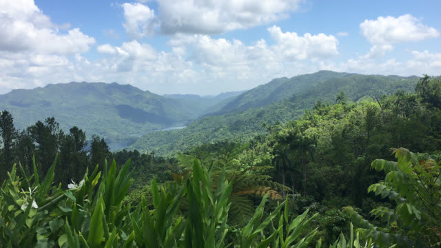 vídeos de stock, filmes e b-roll de hanabanilla look-out in the escambray mountains, cuba - reserva natural