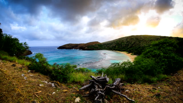 hanauma bay, oahu, hawaii - oahu stock videos and b-roll footage