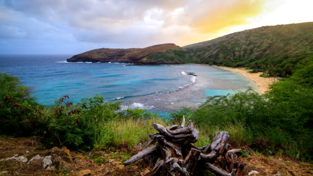 stockvideo's en b-roll-footage met hanauma bay in oahu, hawaii - oahu
