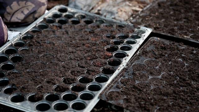 handlandwirtschaft füllt boden und gleicht auf anbautablett aus - gummi stock-videos und b-roll-filmmaterial