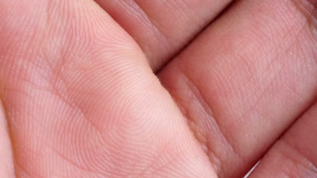 hand and fingers extreme close-up - intellectual property stock videos & royalty-free footage