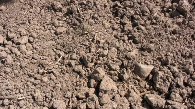 vídeos de stock, filmes e b-roll de mão e areia aridity - clima árido