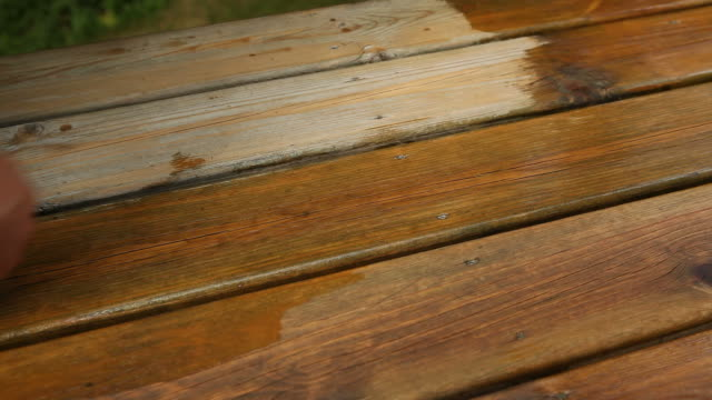 hand applying deck stain with a large paintbrush - timber stock videos and b-roll footage