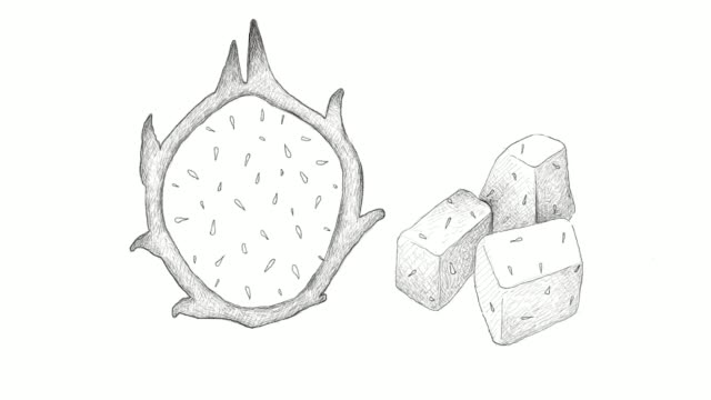 hand drawn of fresh ripe dragon fruit video clip - cactus drawing stock videos & royalty-free footage