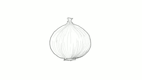 hand drawn of fresh yellow onion video clip - peel stock videos & royalty-free footage