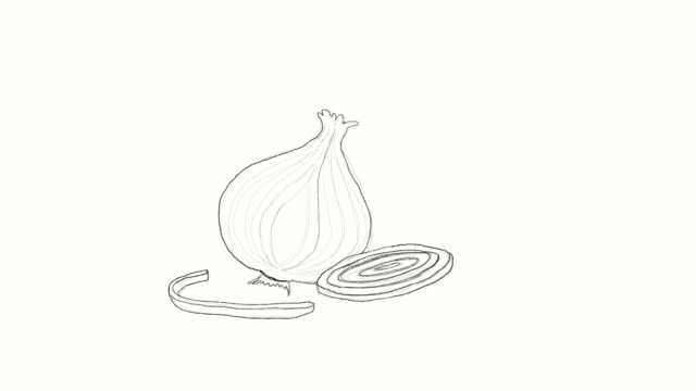 hand drawn of spring onion video clip - line art stock videos & royalty-free footage