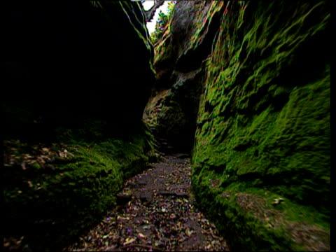 hand held camera moves forward through narrow green craggy rock faces shropshire - parete rocciosa video stock e b–roll