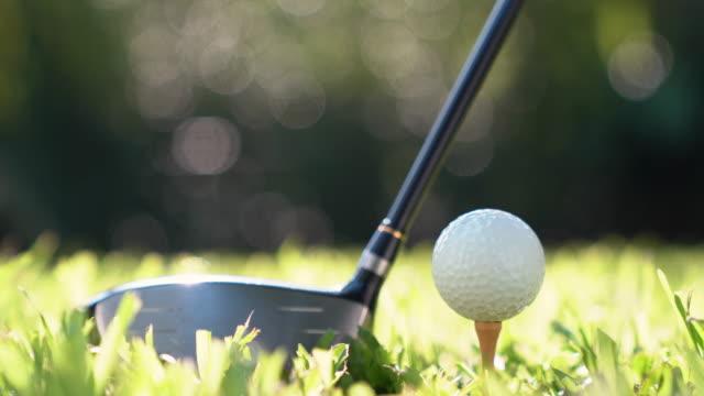 手のゴルフコースでティーを用いたゴルフ ボールを保持します。 - パットする点の映像素材/bロール