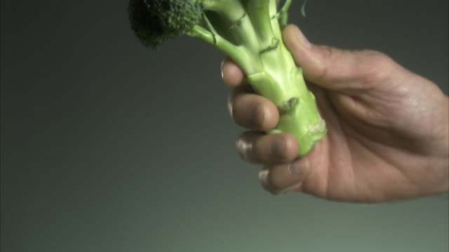 hand holding broccoli. - broccoli stock videos & royalty-free footage