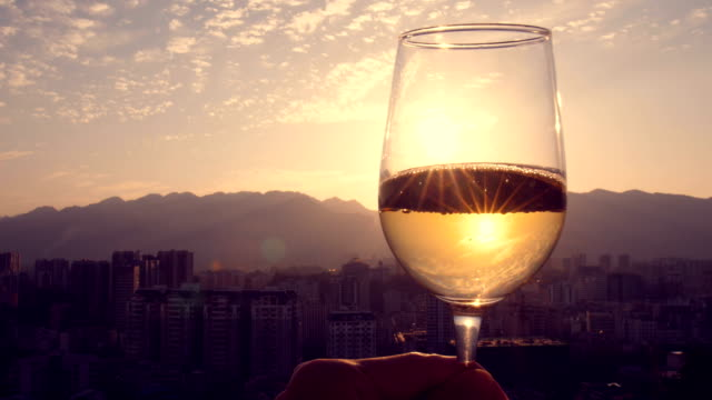 hand holding champagne at sunset - bicchiere da vino video stock e b–roll