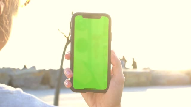 hand holding mobile phone at the park with green screen - chan buddhism stock videos & royalty-free footage