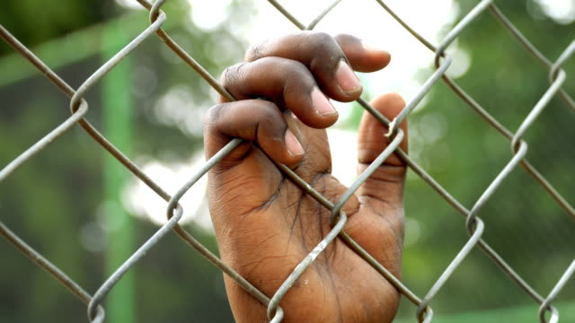 hand holding on chainlink fence - wire mesh fence stock videos & royalty-free footage