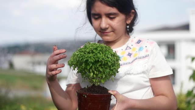 vídeos de stock e filmes b-roll de hand holding small green flower in dirt - ramo parte de uma planta