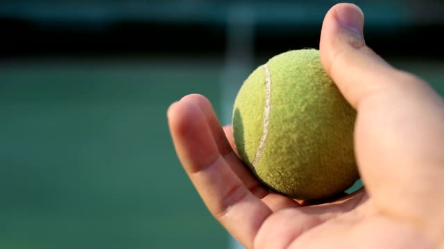 hand holding tennis ball - vincere video stock e b–roll
