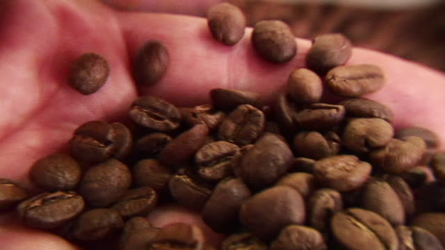ecu hand holing coffee beans - holing stock videos & royalty-free footage