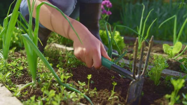 庭の鍬を保持し、庭のベッドで作業する10代の少女のslo moハンド - one teenage girl only点の映像素材/bロール