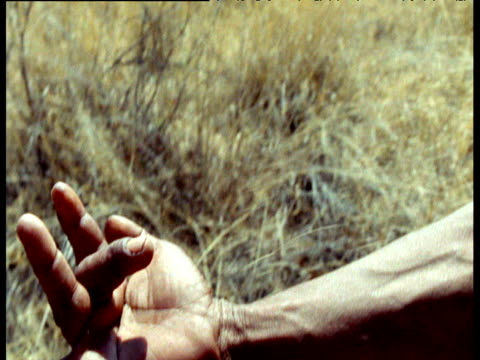 hand of san bushman makes sign of kudu antelope as he tracks it through kalahari desert, southern africa - avambraccio video stock e b–roll