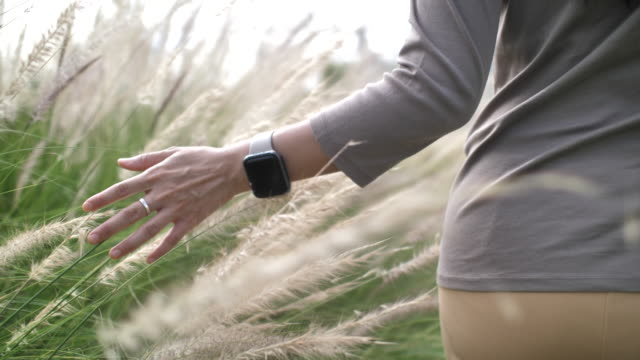 slow motion hand of woman touching the grass - idyllic stock videos & royalty-free footage