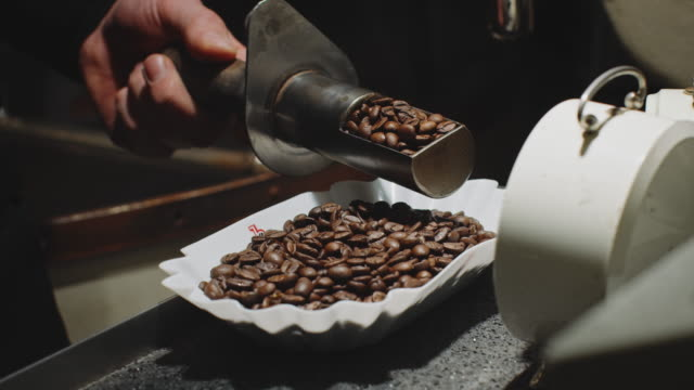 hand of worker holding roasted coffee beans - quality control stock videos & royalty-free footage