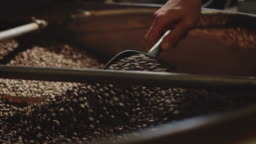 Hand of worker mixing coffee beans in machine