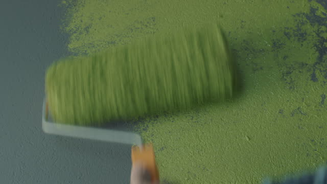 hand painting a wall using a roller - paint roller stock videos & royalty-free footage