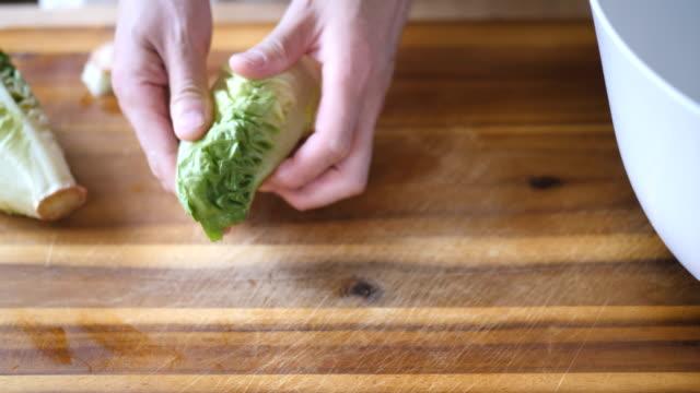 hand picking cos lettuce