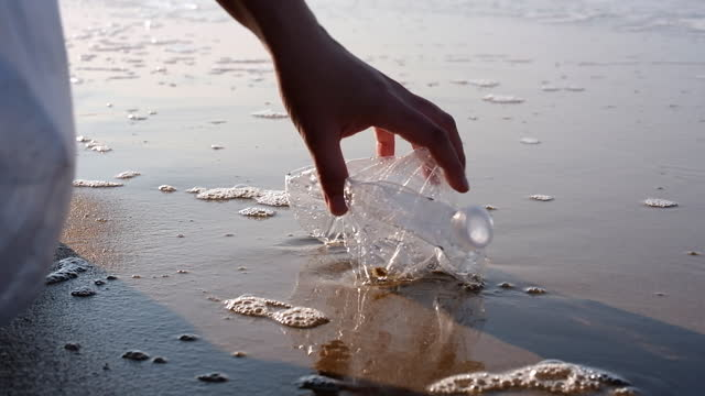 hand picking up plastic bottle at beach. - collection stock videos & royalty-free footage