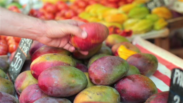 vídeos de stock e filmes b-roll de hand picks up and inspects colorful mango in brazilian market - fruta