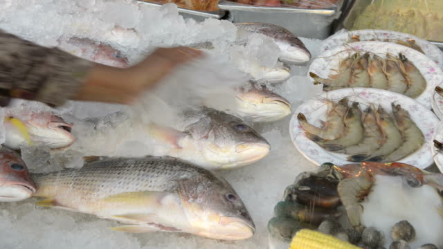 hand puts ice on fresh fish and seafood for barbecue at buffet - prawn animal stock videos and b-roll footage