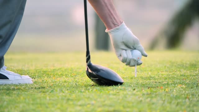 hand putting golf ball on tee in golf course.sports cinemagraphs - golf club stock videos & royalty-free footage