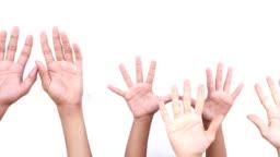 Hand Raised on white background