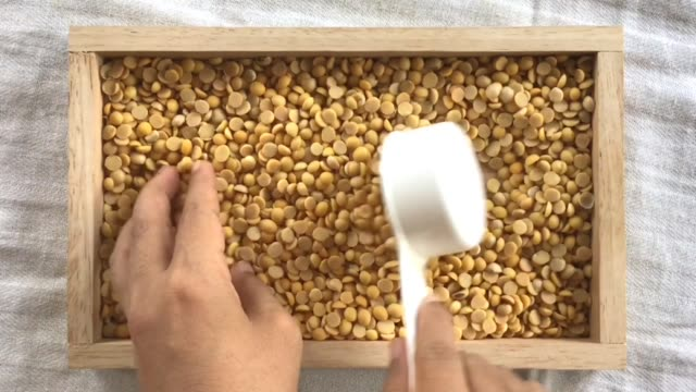 hand scooping soybeans in a measurement cup - dried food stock videos & royalty-free footage