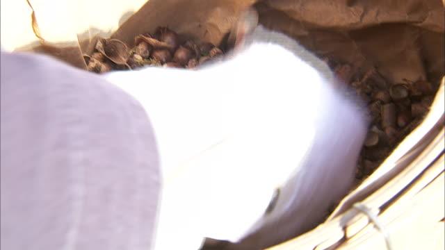 stockvideo's en b-roll-footage met a hand scoops acorns out of a basket. - handen in een kommetje