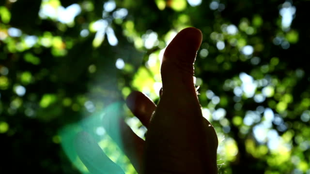 hand silhouette - ethereal stock videos and b-roll footage