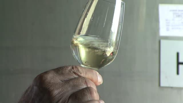 MS Hand swirling glass of white wine / Limassol, Cyprus