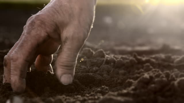 slo mo hand tiling the soil - land stock videos & royalty-free footage