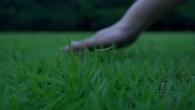 Hand touch the grass