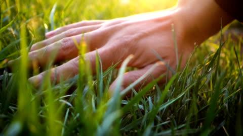 自然を感じる草に触れる手 - grass点の映像素材/bロール