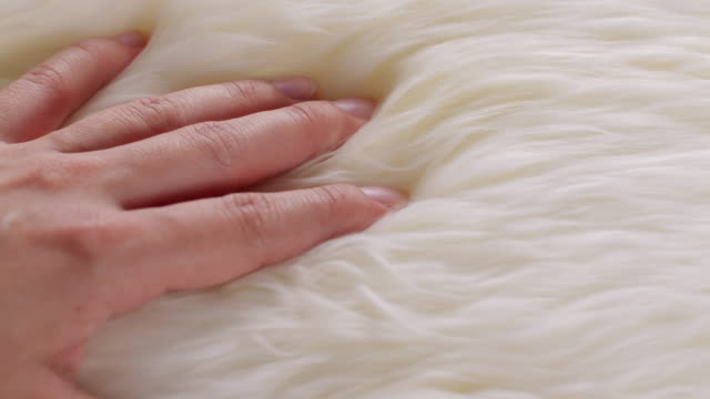 a hand touching wool sweaters - morbidezza video stock e b–roll