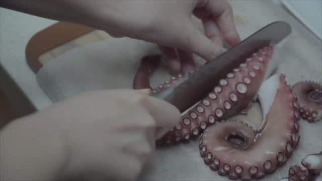 hand trimming octopus by knife at home / south korea - tentacle sucker stock videos & royalty-free footage