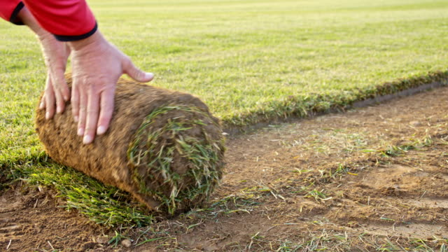 slo mo ds hand unroll the sod on a field - lawn stock videos & royalty-free footage