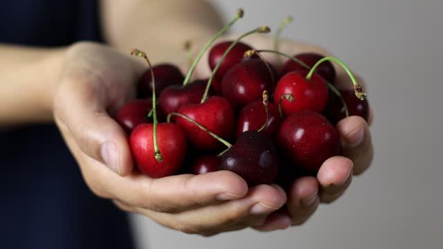 vídeos de stock e filmes b-roll de handful of cherries - ramo parte de uma planta