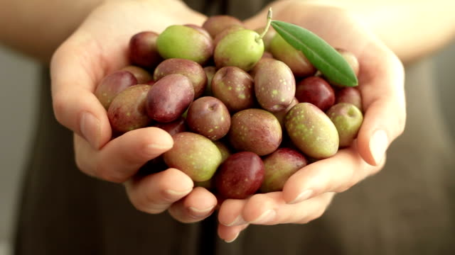 handful of olives - olive fruit stock videos and b-roll footage