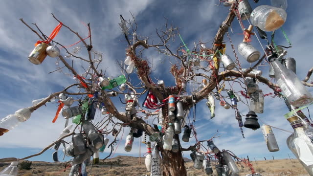 vídeos de stock e filmes b-roll de handheld closeup of strange assortment of decorations on barren dead tree shrine in middle of desert. - ilustração